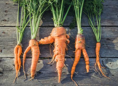 Ingredient Highlight: Carrot