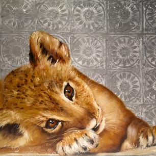 Bébe lion