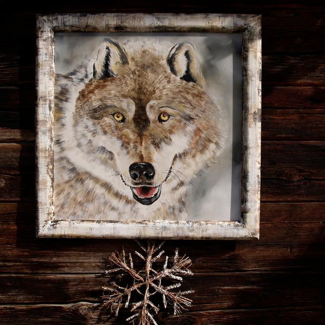 Le loup de Candide