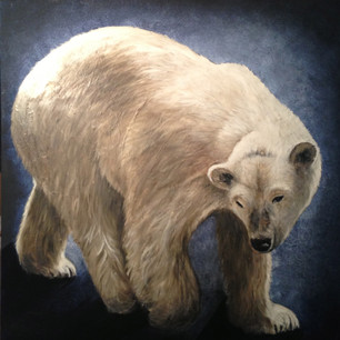 L'ours blanc