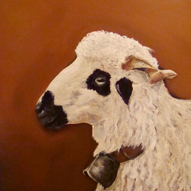 Mouton thône et martaud