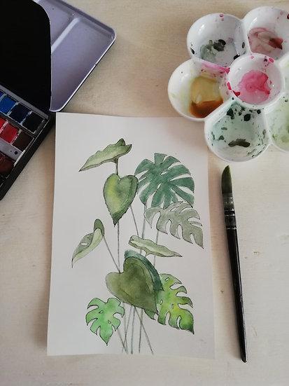 Aquarelle • Tropical