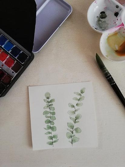 Aquarelle • Feuilles d'Eucalyptus