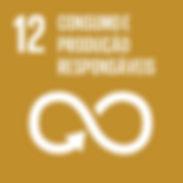 12-Consumo-e-Produção-Sustentáveis.-Veto
