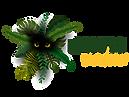 Logo Oficial Exotic Value_Mesa de trabaj