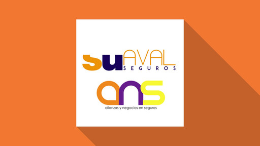 Animated Coporate Video SuAval company