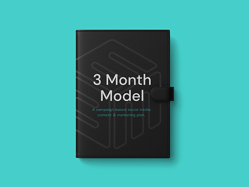 3MM_notebook copy.png