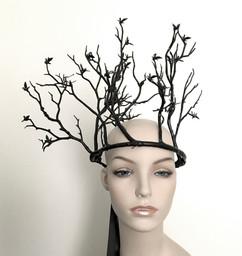 Blackbird Tree Crown