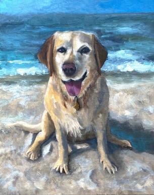 Pet Portrait Commission - Lily