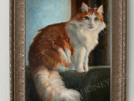 Fiona Shazam - Oil Painting Pet Portrait