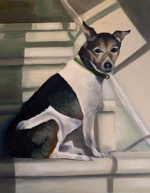 Pet Portrait Commission - Wellington