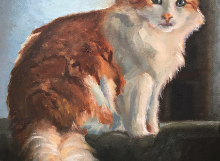 Fiona Shazam - Oil Painting Pet Portrait