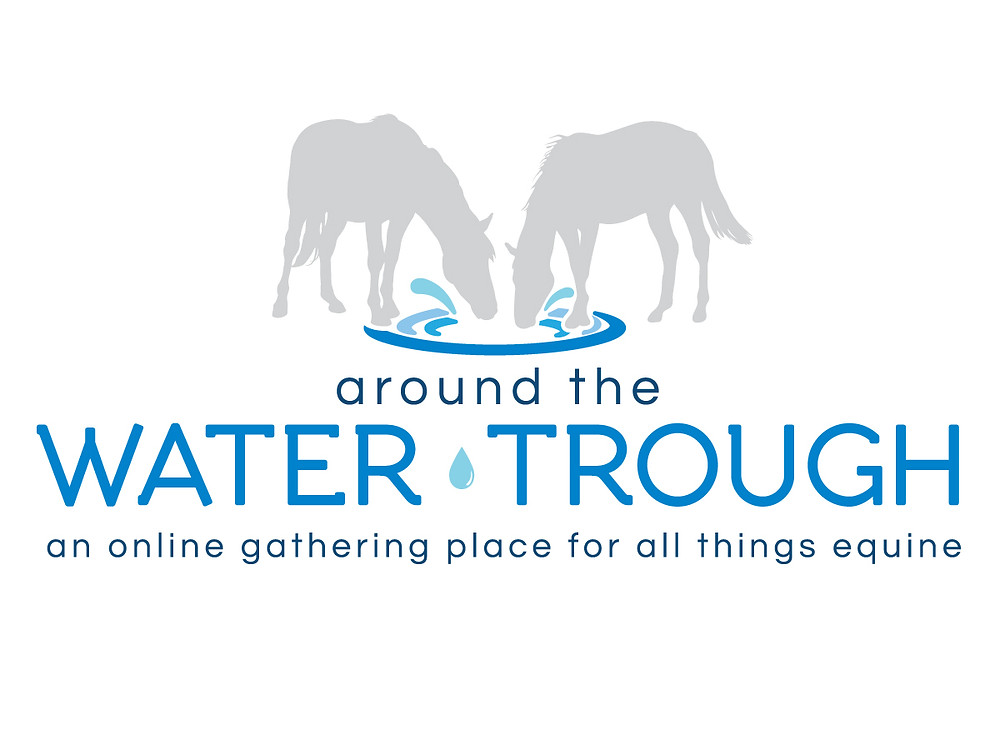 horses, ponies, equestrians, allthingsequine, aroundthewatertrough, western, jumpers, eventing, dressage, hunters, equestrianlife, horselife, horsebreeds
