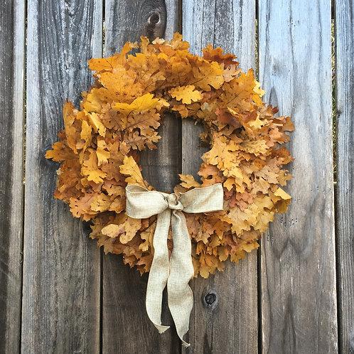 California Oak Wreath,  Golden Yellow