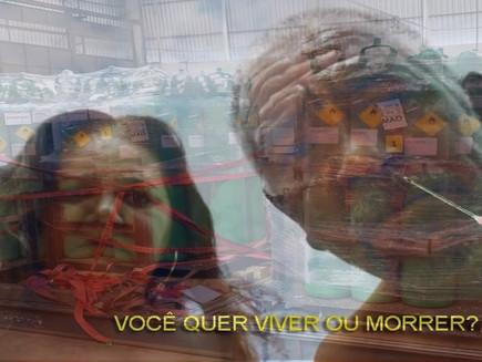 O PULMÃO DO MUNDO SEM OXIGÊNIO E A REVOLTA DA VACINA 2.0