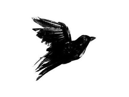 Blackbird e o lugar de empatia