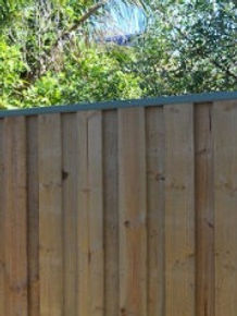 pinelap fencing wooden fencing boundary