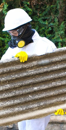 Asbestos and all fencing removals