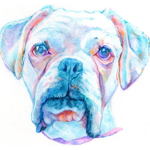 Single Pet Portrait - Watercolour