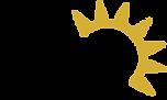 LVS Inc. logo.png