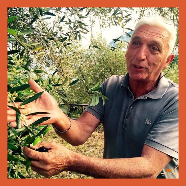 Giorgio über uns Webseite (1).png