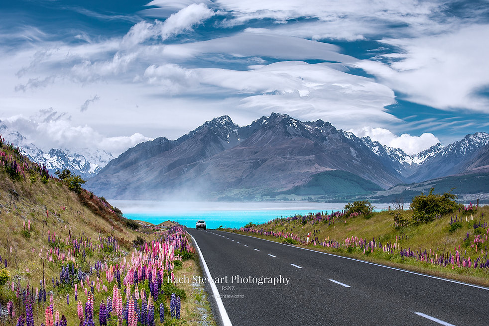 Road to Mount Cook Lupins