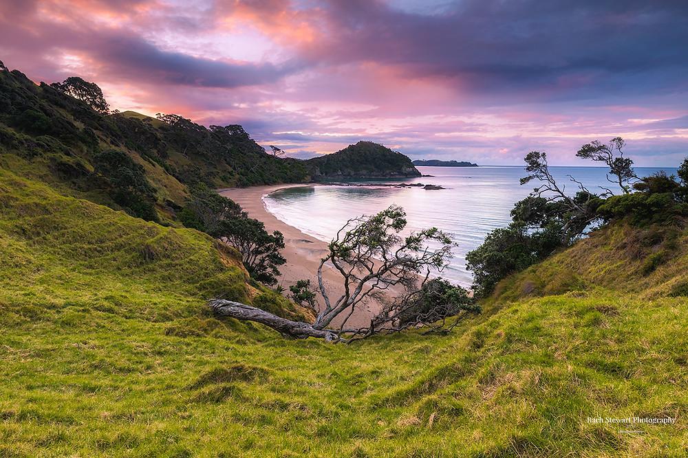 Daisy Bay Tutukaka Northland
