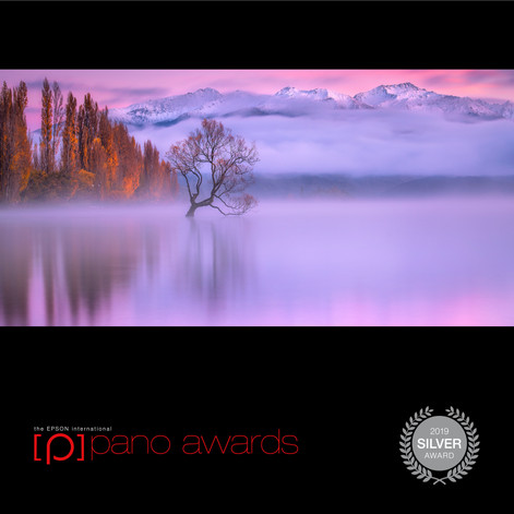 2019-Epson-Pano-Awards-Open-Social-Badge