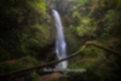 McLarens Falls Tauranga