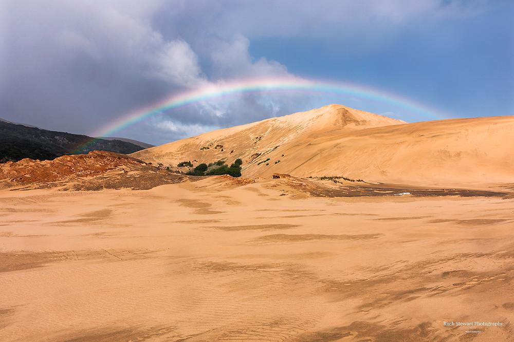 Te Paki Sand Dunes Northland