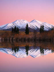 SOUTH ISLAND PHOTOGRAPHY GALLERY