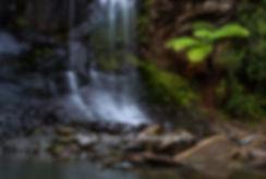 Mokoroa Falls Auckland
