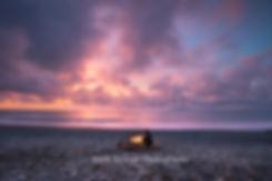 Okarito Beach West Coast