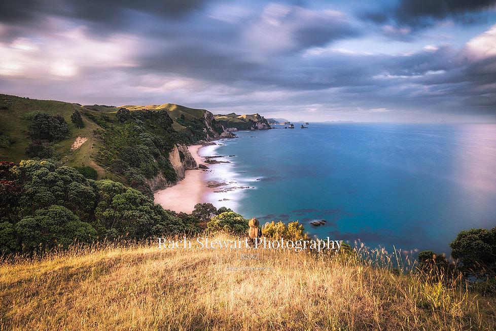 Coromandel New Zealand