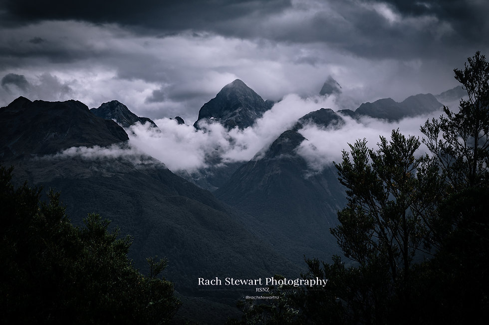 Moody Milford Mountains Routeburn Track