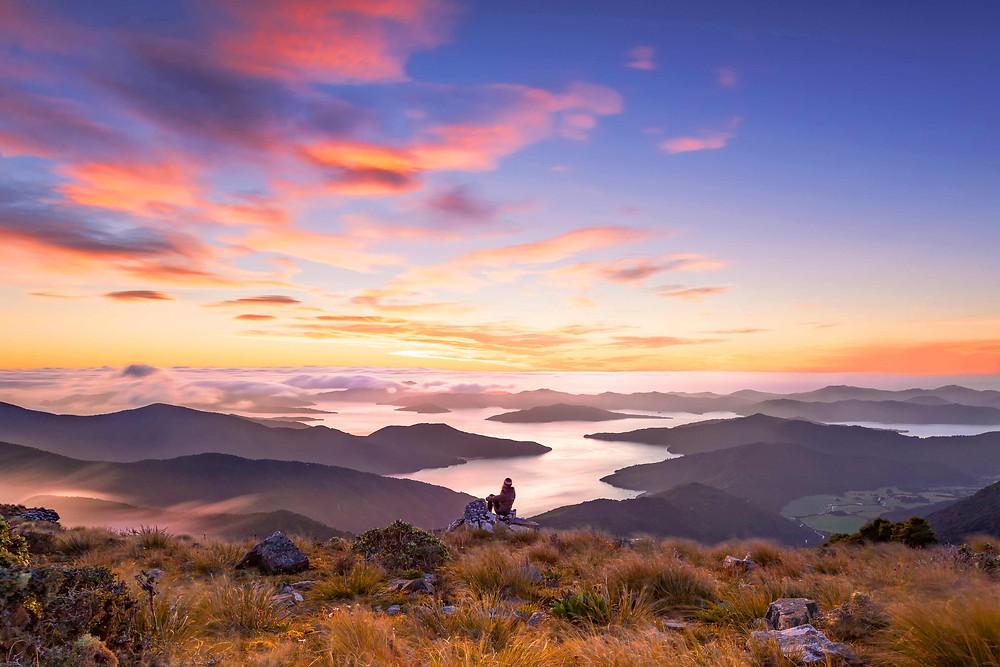 Mount Stokes Marborough New Zealand