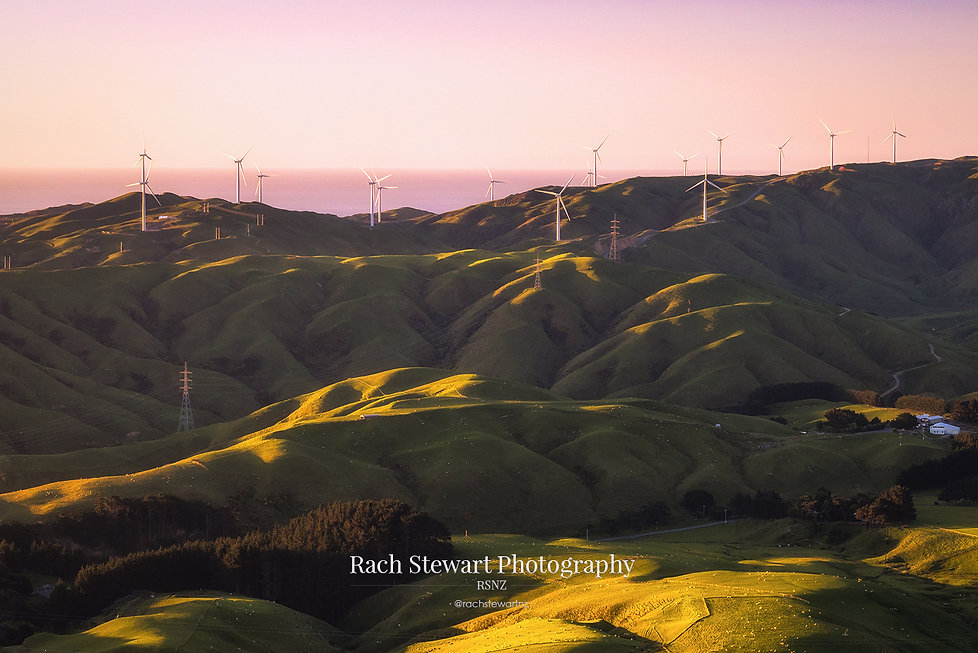 Wellington wind turbines