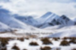 Lindis Pass Winter Wanaka