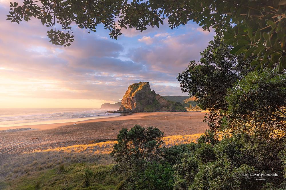 Piha Beach Auckland