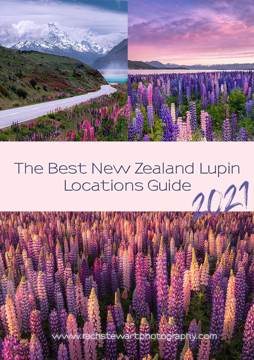 New Zealand Lupin Guide