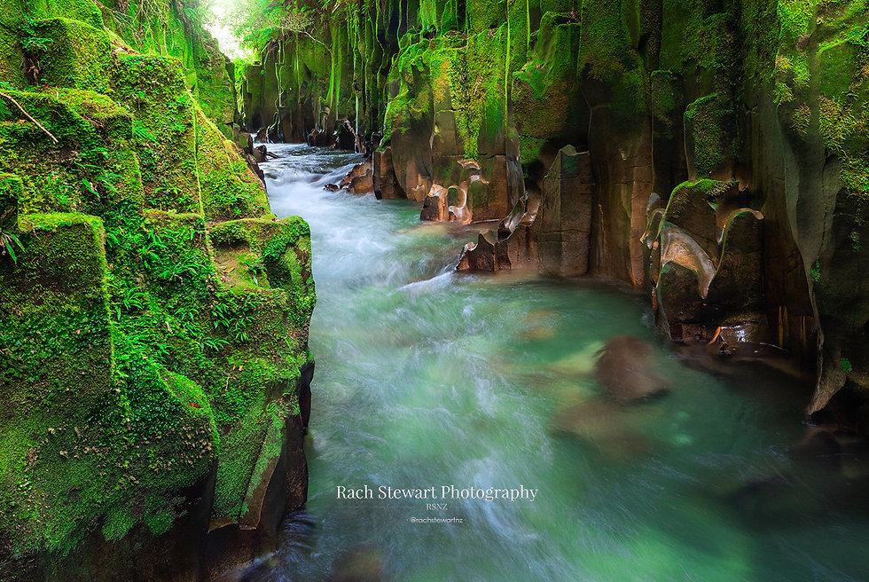 Whirinaki canyon