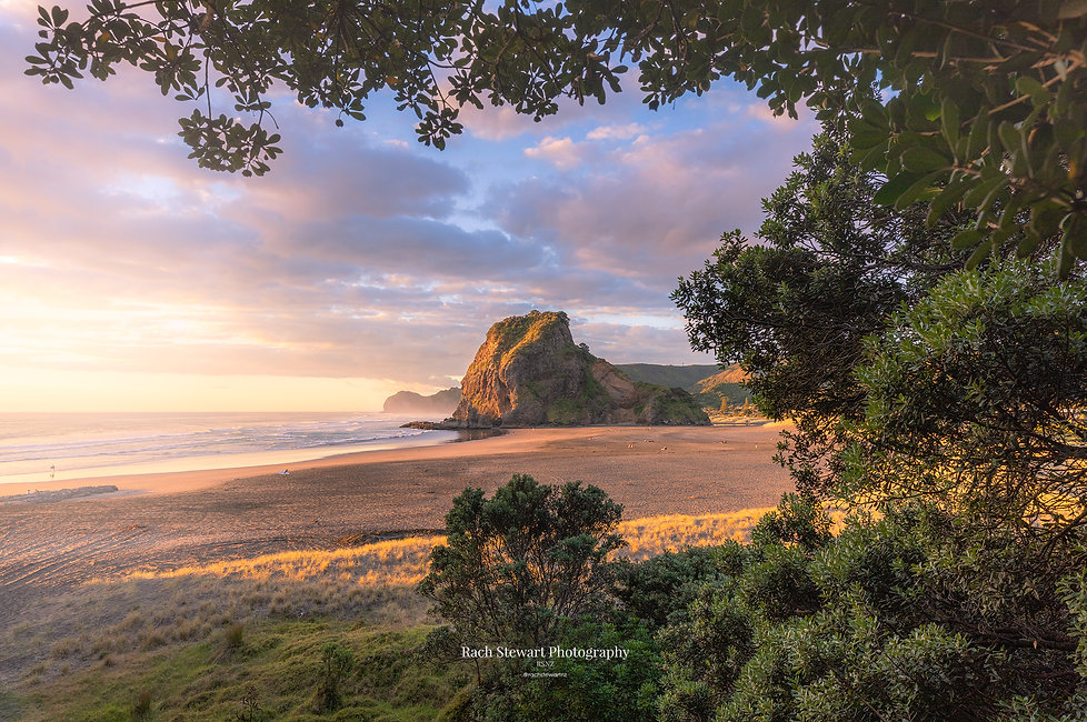 lion-rock-piha.jpg
