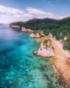 Cathedral Cove aerial