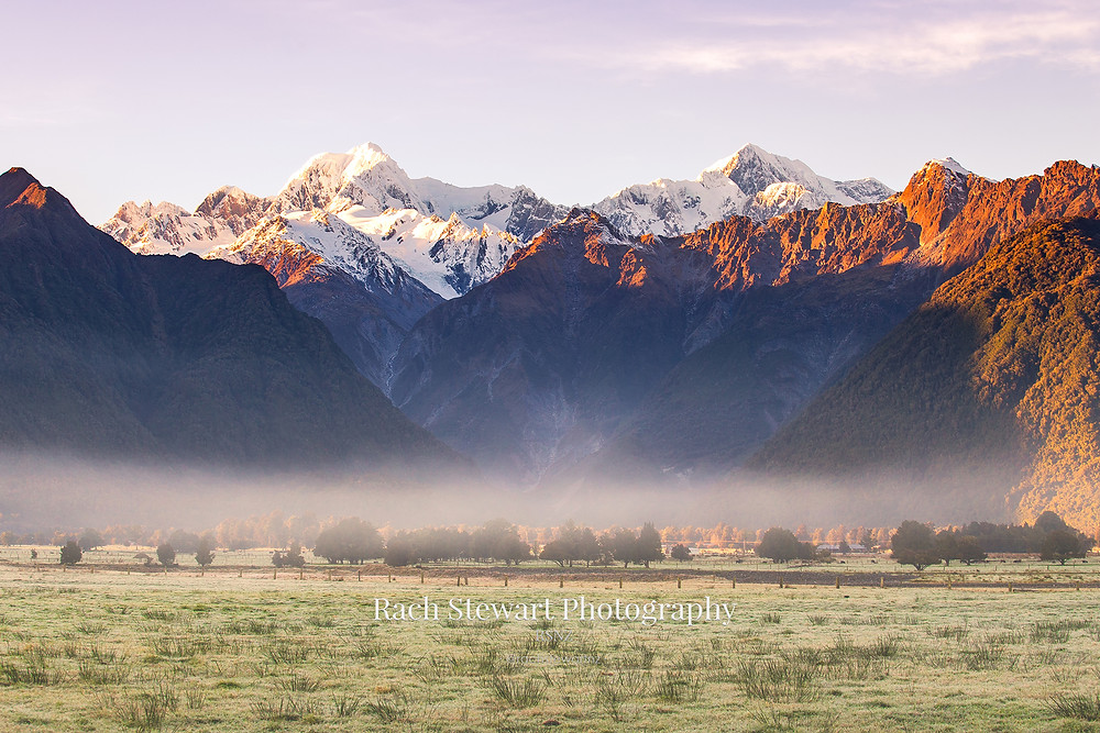 Mount Tasman and Mount Cook from the Lake Matheson walk
