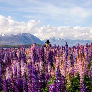 Wilderness-NZ-Lake-Tekapo.jpg