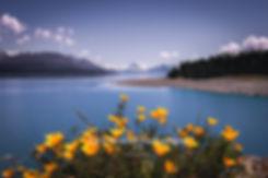 Lake Pukaki Mt Cook spring