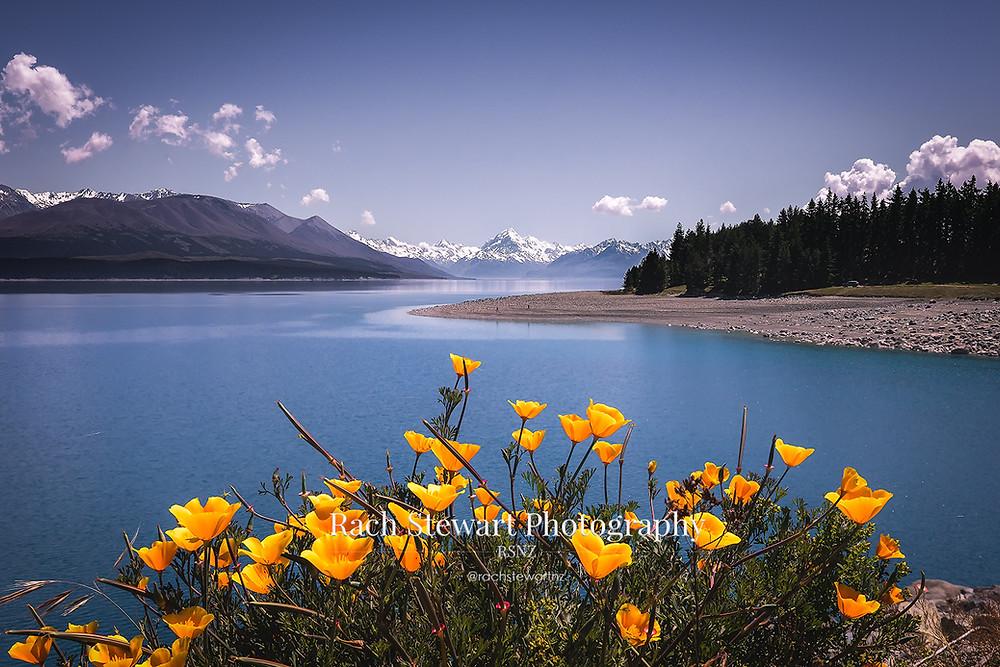 Lake Pukaki spring Mount Cook