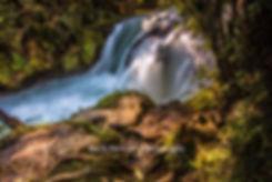 Trout Pool Falls Rotorua
