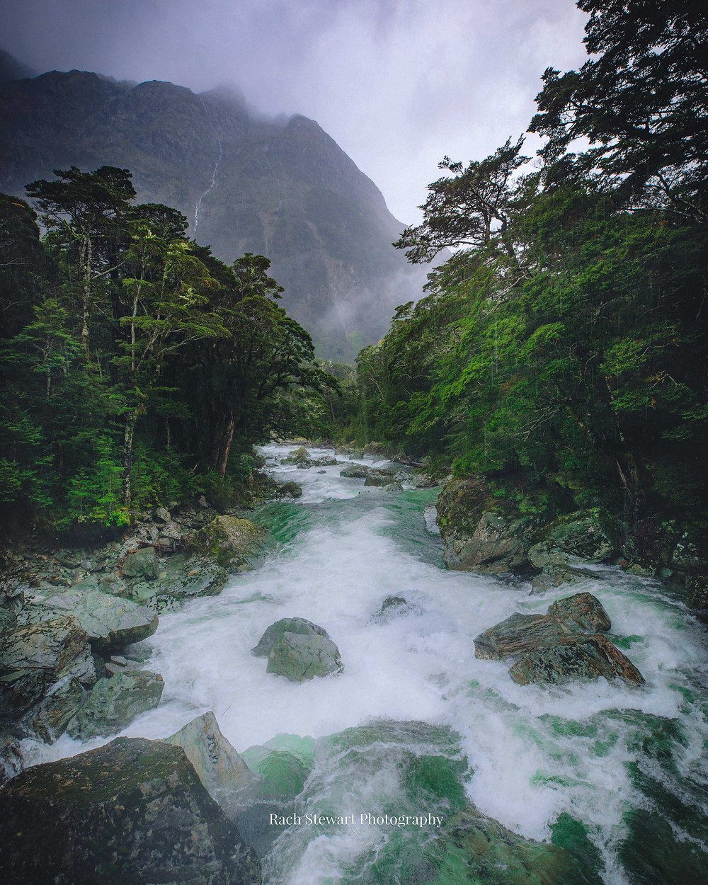 View over the river at the end of the Routeburn track