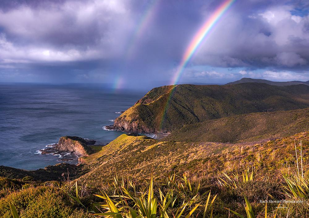 Cape Reinga Northland
